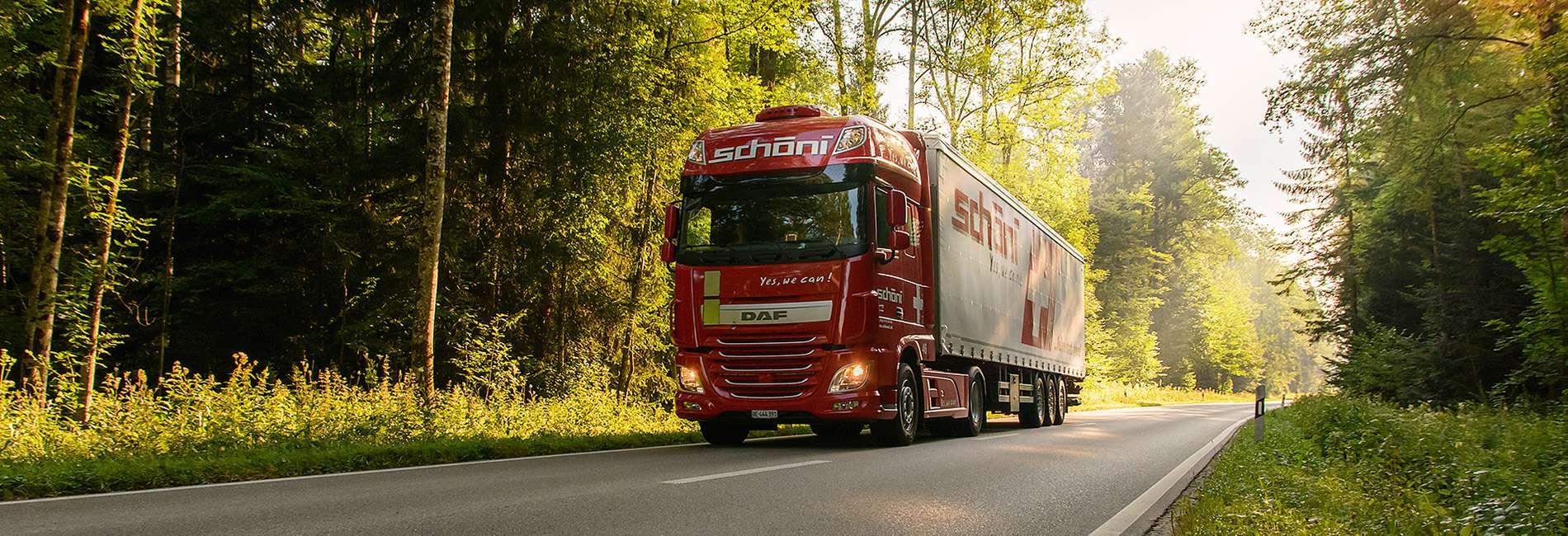 Schöni Transport AG Auflieger im Wald